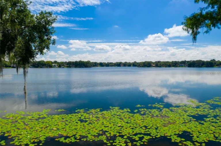 A photo of Lake Osceola with trees in the background and green lily pads in the water.
