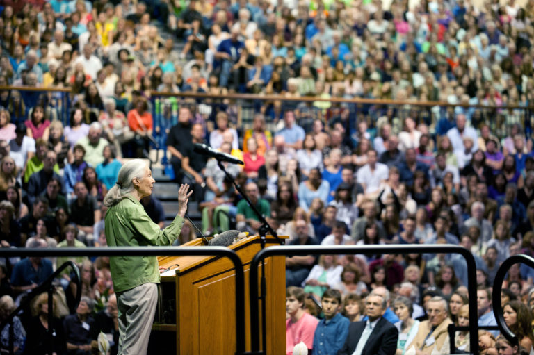 Jane Goodall stands at a podium and delivers a speech to a crowded stadium.